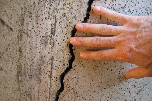 «Умные» бактерии способны починить бетон в Липецке
